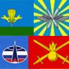 Флаги родов войск