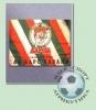 Флаг АК Барс (90х135)