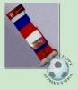 Шарф РФС (вышивка) (1)